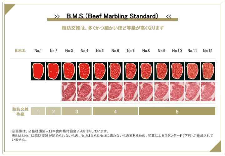 BMS(脂肪交雑)の等級の見分け方
