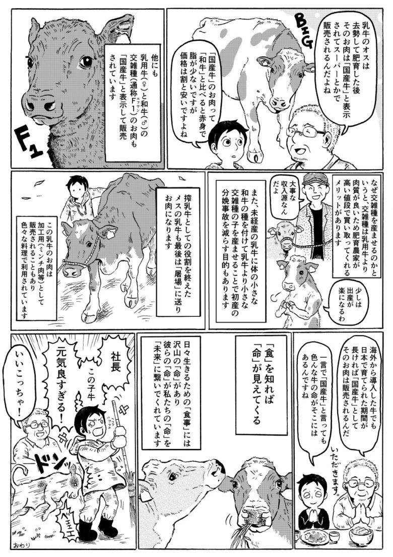 国産牛の基礎知識02