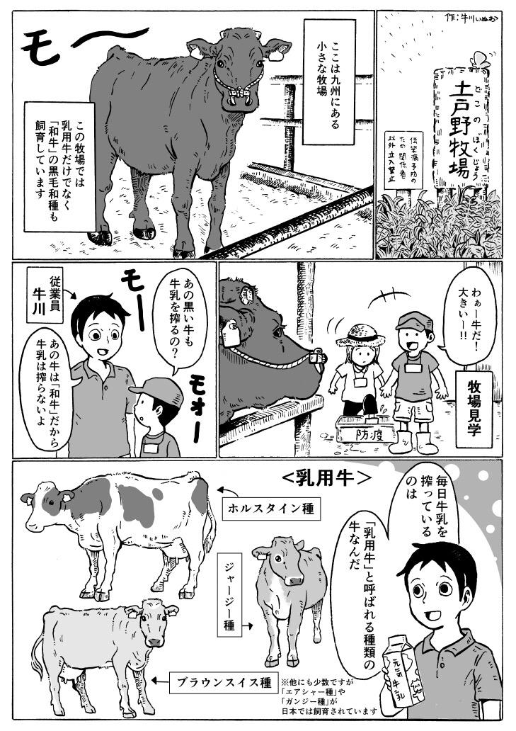 和牛の種類について1