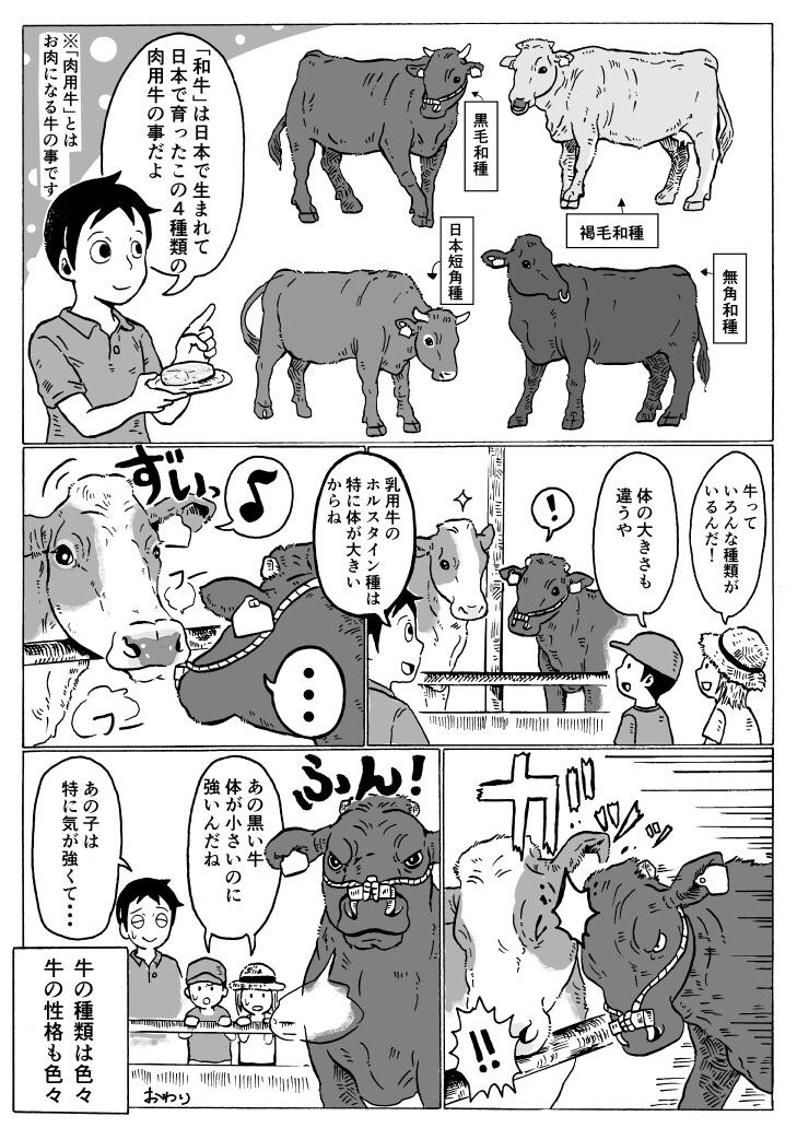 和牛の種類について2