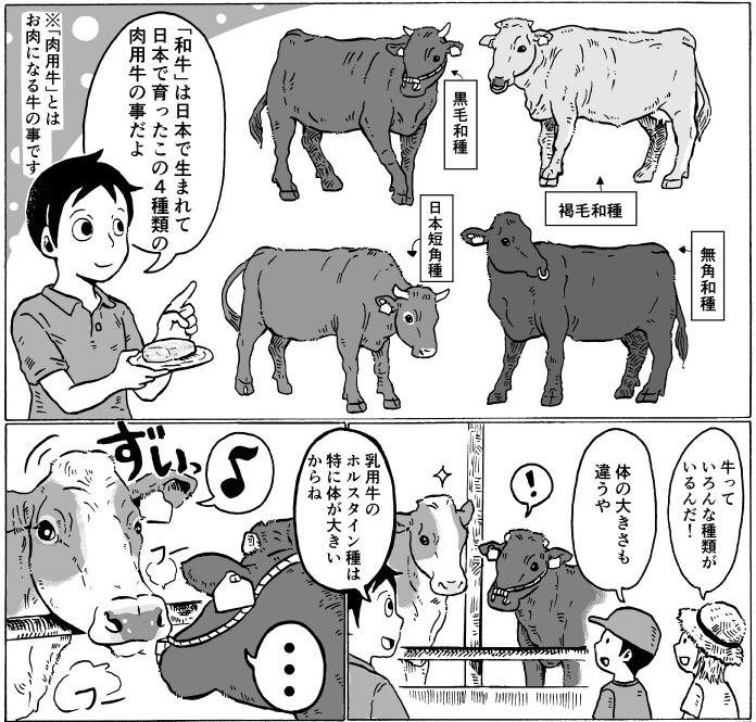 和牛の種類について_アイキャッチ